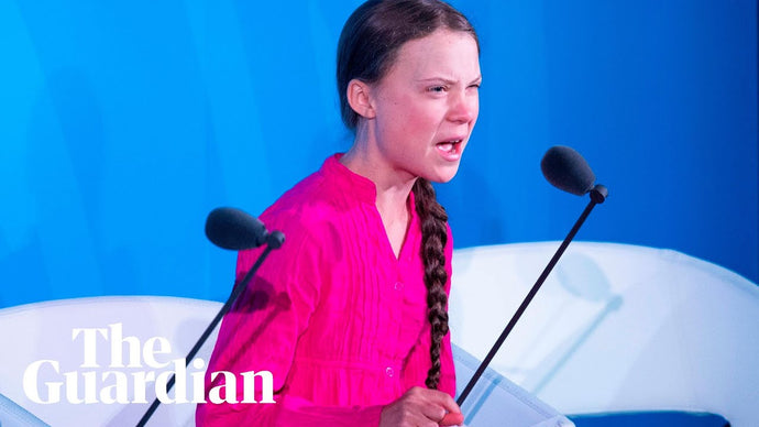 How dare you. Greta Thunberg