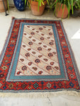 3'10 x 5'3 Antique Persian Souf Rug (#1301ML)