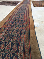 2'6 x 23'9 Camel Hair Antique Serab Rug / Long skinny Runner (#684)