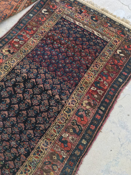 3'6 x 6'11 antique Perisan Kurdish rug (#721)