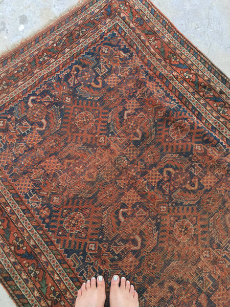 3'10 x 6'3 Antique Persian Afshar Rug (#722)