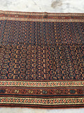 5 x 15'9 Midnight Blue Paisley Bidjar Rug