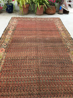 5'10 x 10'6 antique Persian Malayer / 6x11 rug (#1106ML)