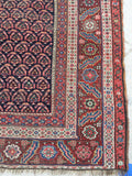6' x 13'3 Antique Senneh Kurdish Rug / Runner