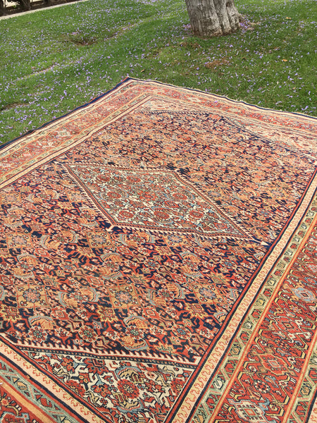 "8'5"" x 10'5"" Antique Malayer Rug"