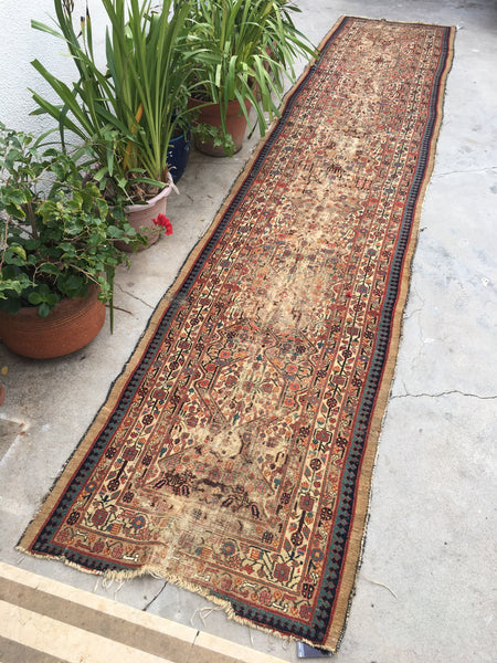 3'5 x 16'3 Persian Serab Camel hair Runner / Antique Rug Runner (#976)