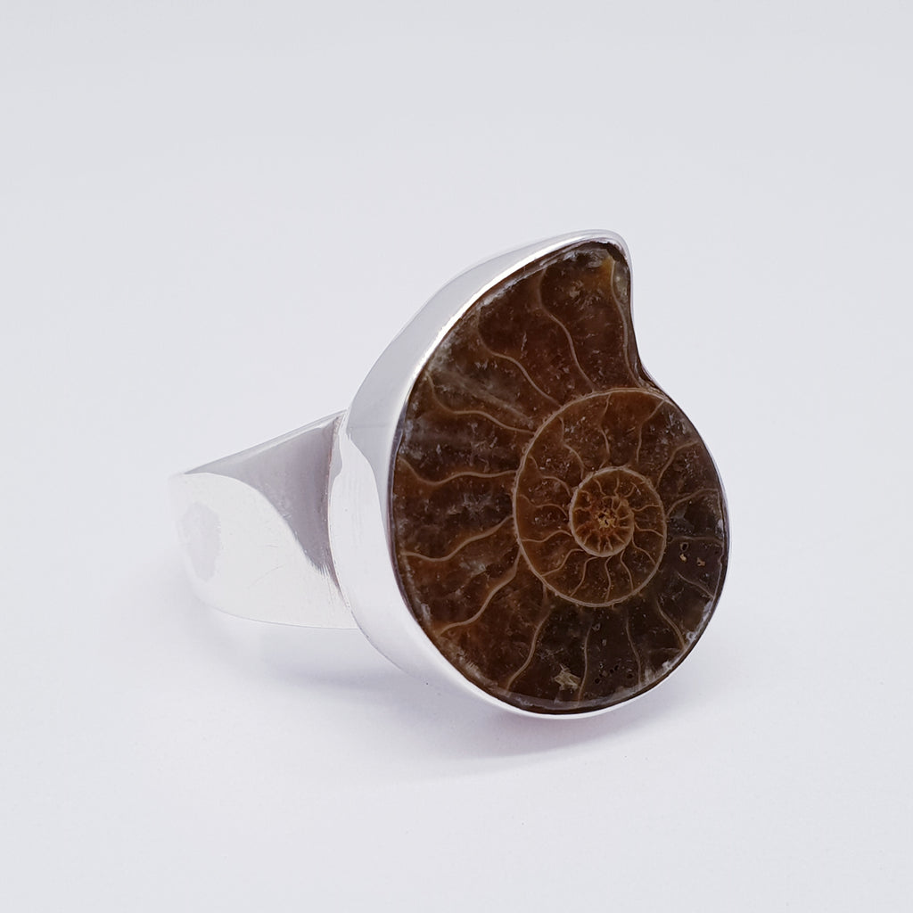Ammonite Adjustable Ring