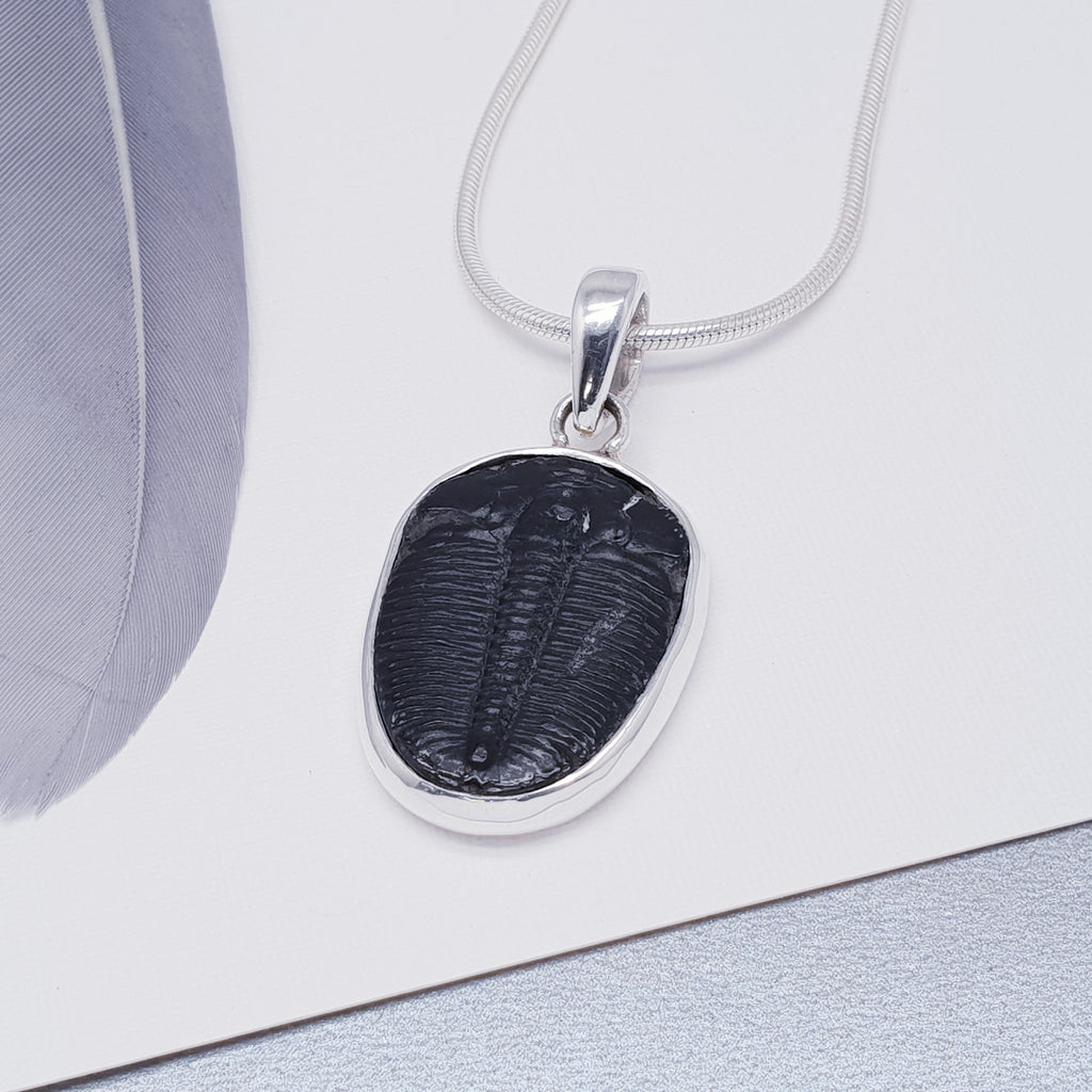 Trilobite Simple Pendant