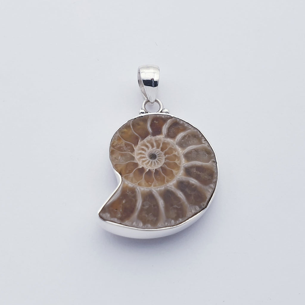 Ammonite Plain Pendant