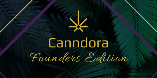 Founders Edition - SPRING! Annual Subscription