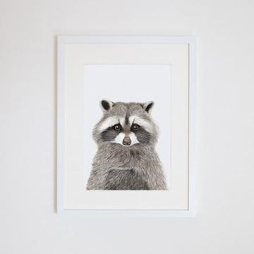 Rocco the Raccoon Print
