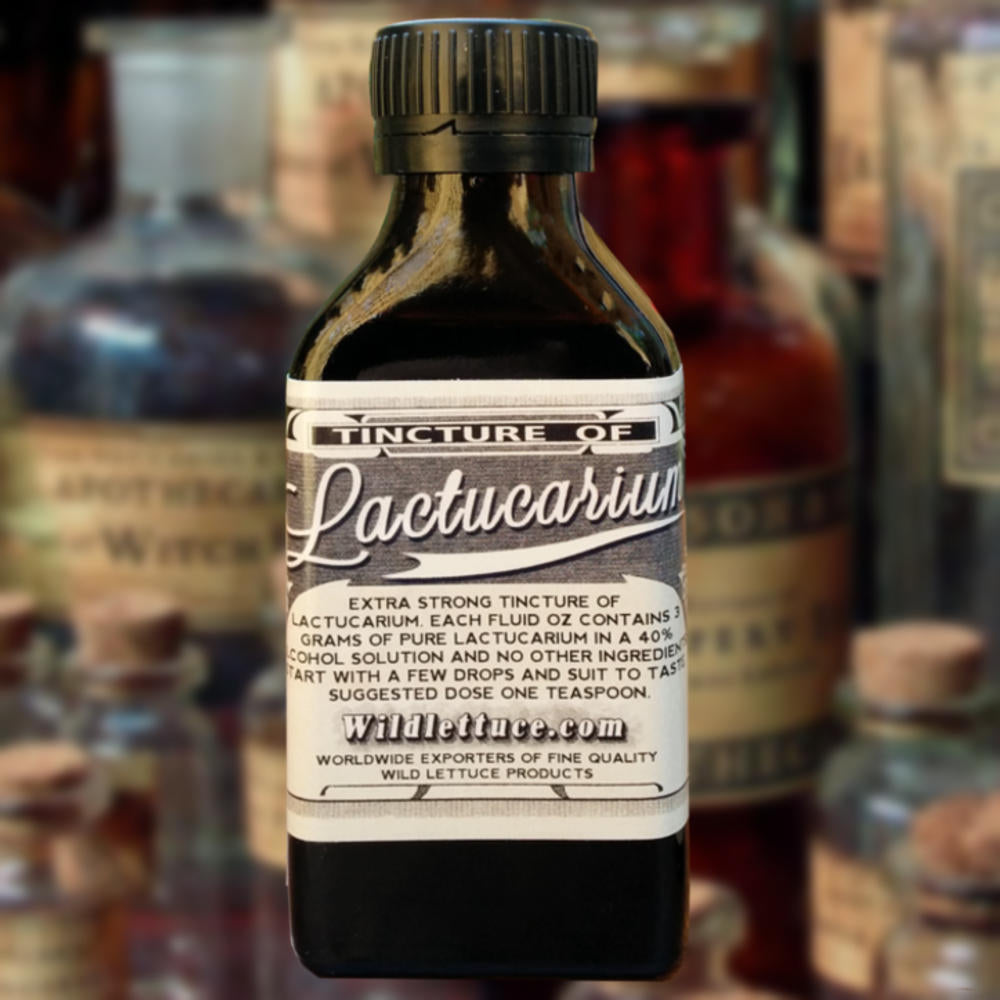 Wild lettuce tincture of lactucarium. A common apothecary medicine of the 19th century.