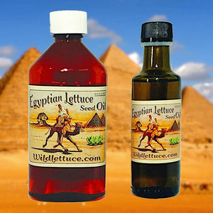 Egyptian Lettuce Seed Oil Exclusively by Wildlettuce.com