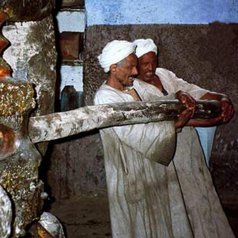 Traditional pressing of Egyptian lettuce seed oil