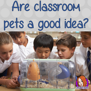 Are classroom pets a good idea?