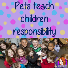 Classroom pets are a great way to teach children about responsibility and animal life. #classroompets #pets #classroom #pshe #science #animals