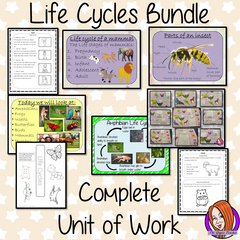 life-cycles-for-kids