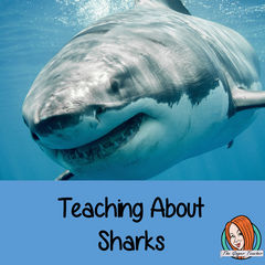 shark-week-in-school