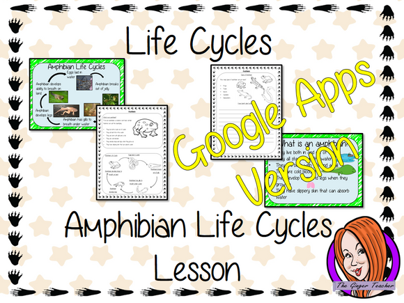 Distance Learning Amphibian Life Cycles Google Slides Lesson    Part of my Life Cycles of Animals unit of work. Teach kids about the life cycles of amphibians.   This resource is a complete lesson on Amphibian life cycles, teaching children about the life cycle, how their food changes as they grow, the different types of amphibians and the parts of an amphibian.      This is the Google Slides version of this lesson!