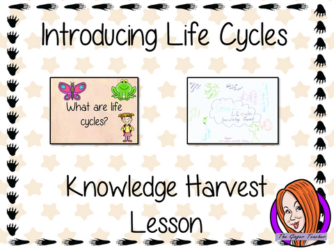 Life Cycles   -  Knowledge Harvest Lesson