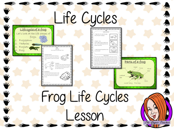 Frog  Life Cycles   -  Complete Science Lesson