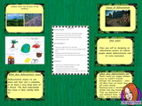 Rainforest Deforestation Complete Lesson on the effects of Deforestation of the Rain forest. Rainforest lesson for kids. There is a detailed PowerPoint to explain deforestation and effects on the rainforest animals and plants. Lots of facts about the rainforests of the world. The children complete a poster to inform and raise awareness about deforestation. Learn about the rainforest destruction rainforest activities for grade #rainforest #rainforestdeforestation #rainforestforkids