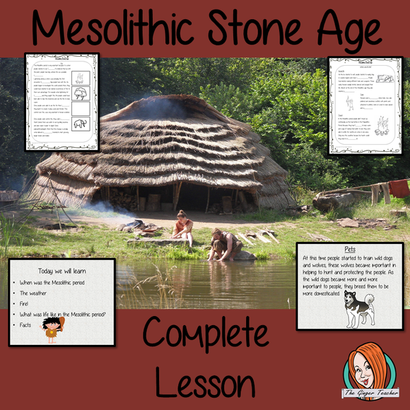 Mesolithic Stone Age Lesson