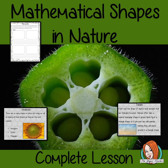 Mathematical Shapes in Nature