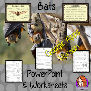 Distance Learning Bats Google Slides Lesson  This download teaches children about bats in one complete lesson. There is a detailed 56 slide presentation on where bats live, cute bat facts, details about how they spend their year, information about how they eat, a look at the different types of bats and a brief look at the parts of a bat. There are also differentiated, 8 page, Google slides, bats worksheets to allow students to demonstrate their understanding. This pack is great for teaching kids all about b
