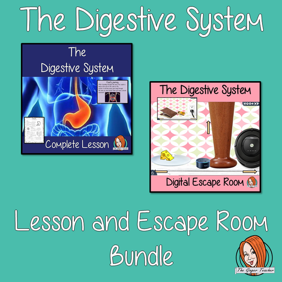 The Digestive System Lesson and Escape Room Bundle