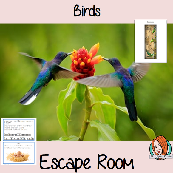 Birds Escape Room Game     Try this escape room style game with your students today! This is a fun game that is perfect for teaching children about Birds. This game focuses on students finding out facts and information and using these to solve puzzles. This helps them to learn.     This activity is great for the beginning of a topic to introduce information or at the end to recap.     Students are trying to help an alien understand Bees and they must solve a series of clues, as well as decode different ciph