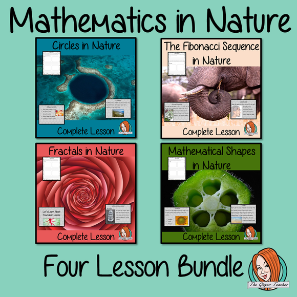 Mathematics in Nature Lesson Bundle