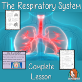 The Respiratory System Science Lesson