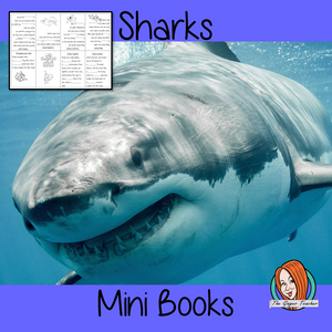 Learn About Sharks Mini Book Use these mini books to teach children facts and information about sharks. There are 5 mini books included, a completed version, 3 differentiated books to see how well the children know the information and a blank version to let them add their own shark information. #sharks #sharkweek #sciencelessons