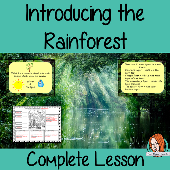 Introducing the Rainforest Complete Lesson