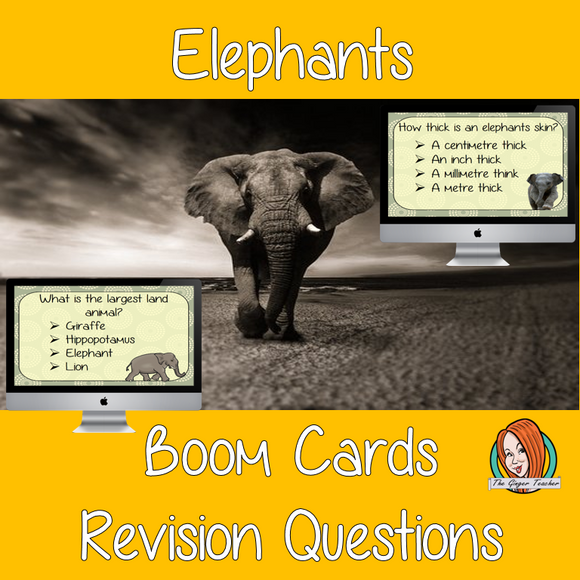 Elephants Revision Questions  This deck revises children's knowledge of Elephants. There are multiple choice revision questions to check children's understanding. These question cards are self-grading and lots of fun!