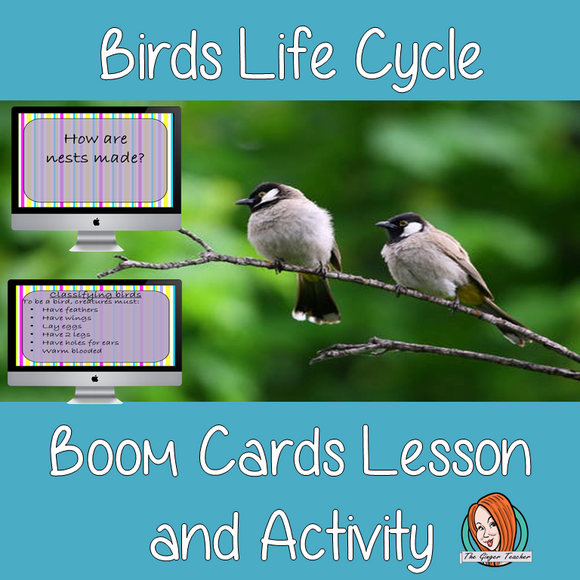 Birds Life Cycle - Boom Cards Digital Lesson