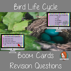 Bird Life Cycle Revision Questions  This deck revises children's knowledge of Bird Life Cycle. There are multiple choice revision questions to check children's understanding. These question cards are self-grading and lots of fun!