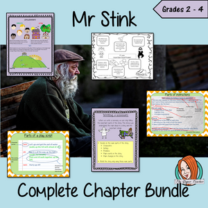 Mr Stink Lesson Bundle