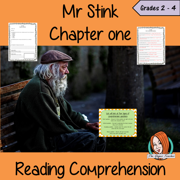 Reading Comprehension – Mr Stink