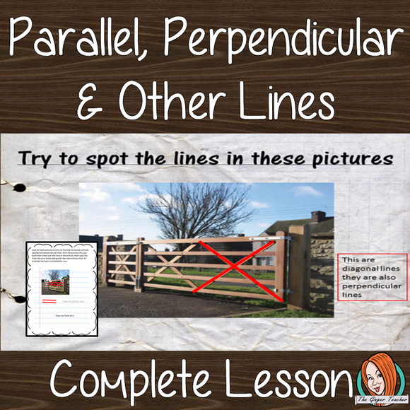 Parallel, Perpendicular, Vertical and Horizontal Lines, Math lesson