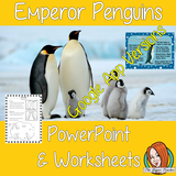 Distance Learning Emperor Penguins Google Slides Lesson  This lesson includes a detailed 30 slide presentation and penguin Google Slides worksheets explaining all about Emperor penguins. It covers the important parts of the penguins' body; what they eat; where they live; how they keep warm and explains the penguin life cycle.   This is the Google Slides version of this lesson!  This download includes: - Complete 30 slide Presentation  - Three versions of a the 6 page differentiated penguin worksheets  - Ans