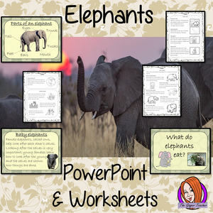 Elephants Lesson PowerPoint and Worksheets
