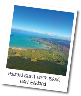 Hauraki Island, North Island, New Zealand