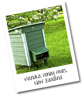 Manuka Honey Hives, New Zealand