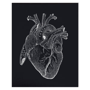 Vintage anatomy black heart print.  Educational biology chart diagram. Black background with white illustrations.