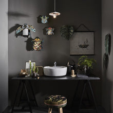 Collection of beetle wall cabinets on gray above bathroom sink