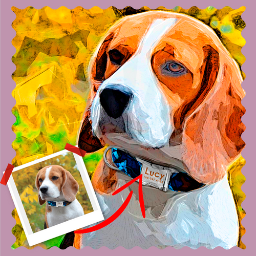 Picasso Pet Artwork - Let Us Turn Your Pet Into Art
