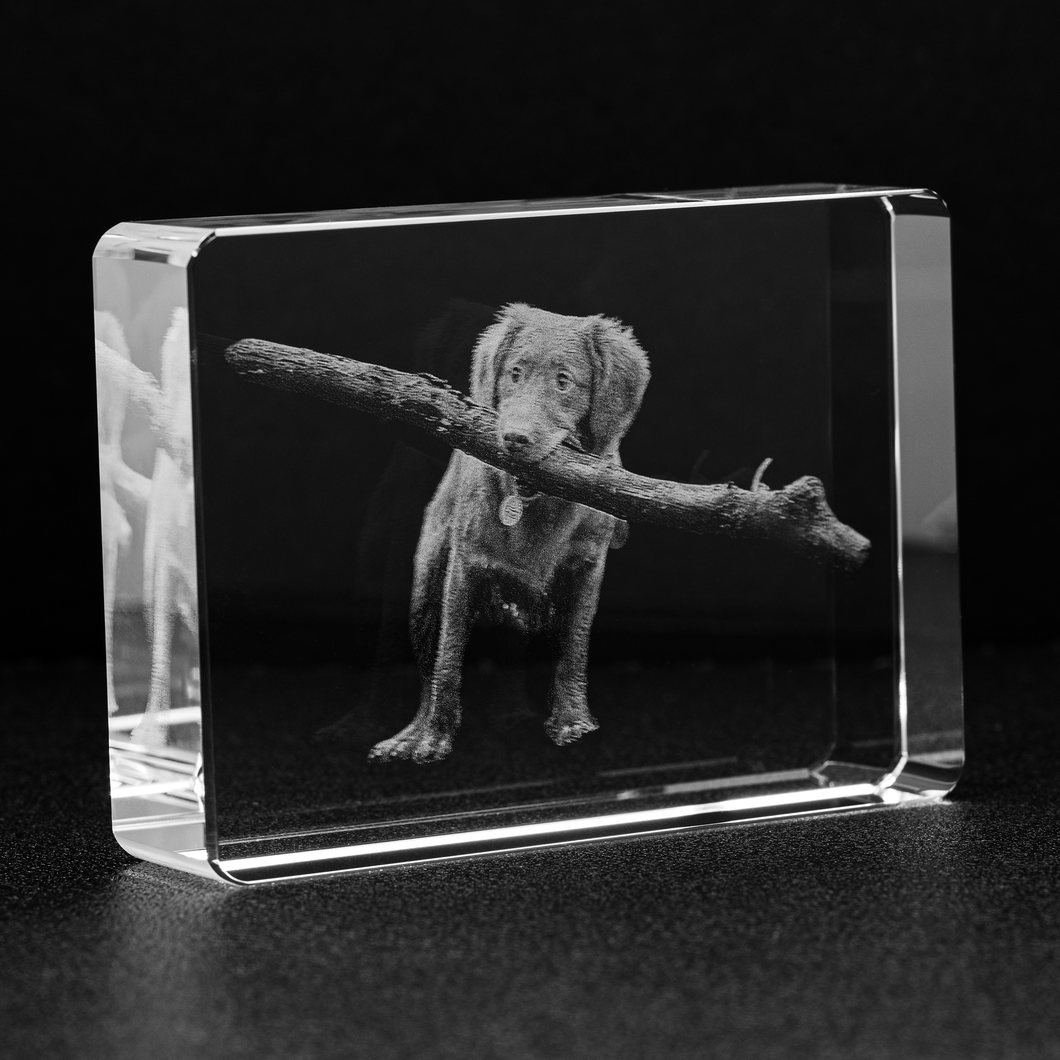 Personalized Crystal featuring YOUR Pet