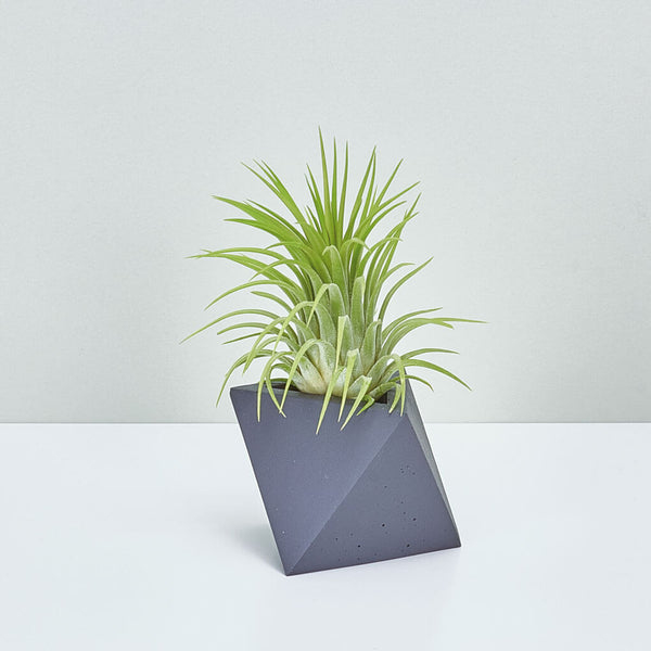 TRIANGLE PLANTER BLACK - Large